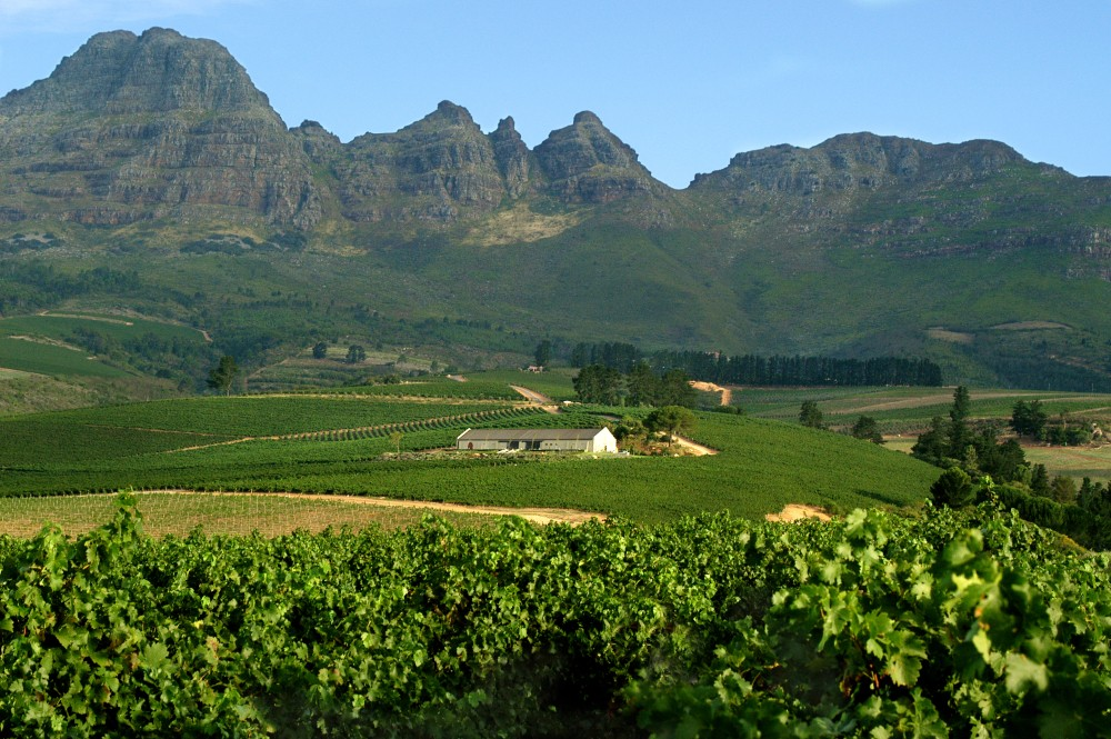 Enjoy the scenic beauty of the Cape Winelands on this Cape Town Day Tour