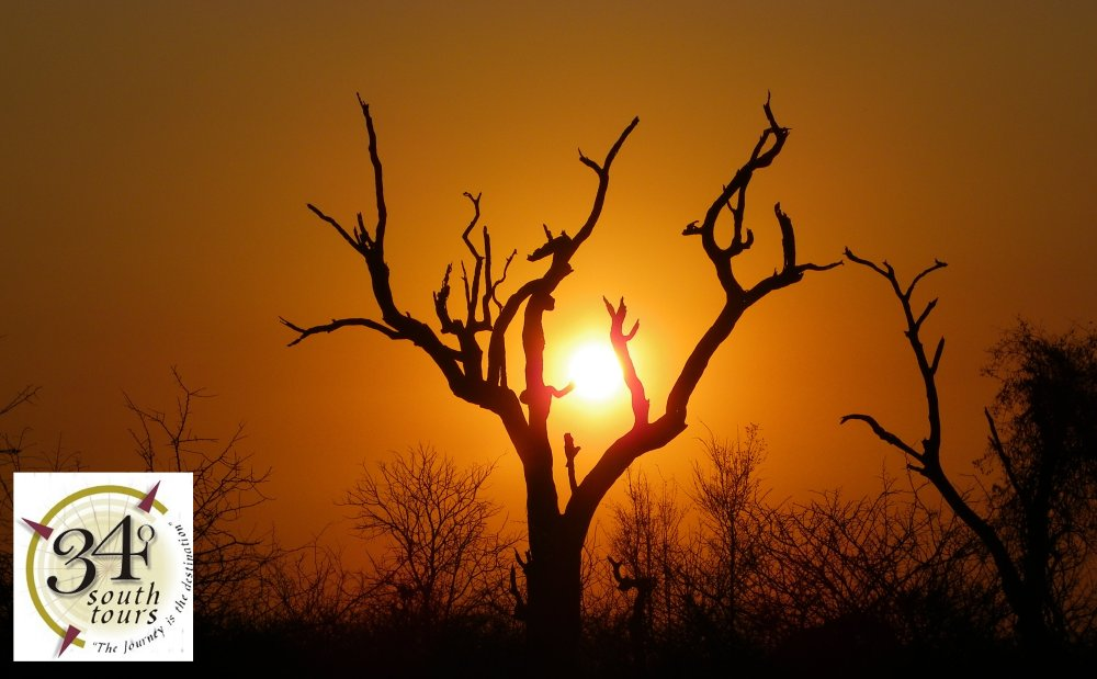 The Kruger National Park is the best safari tour experience and provides awesome African sunsets
